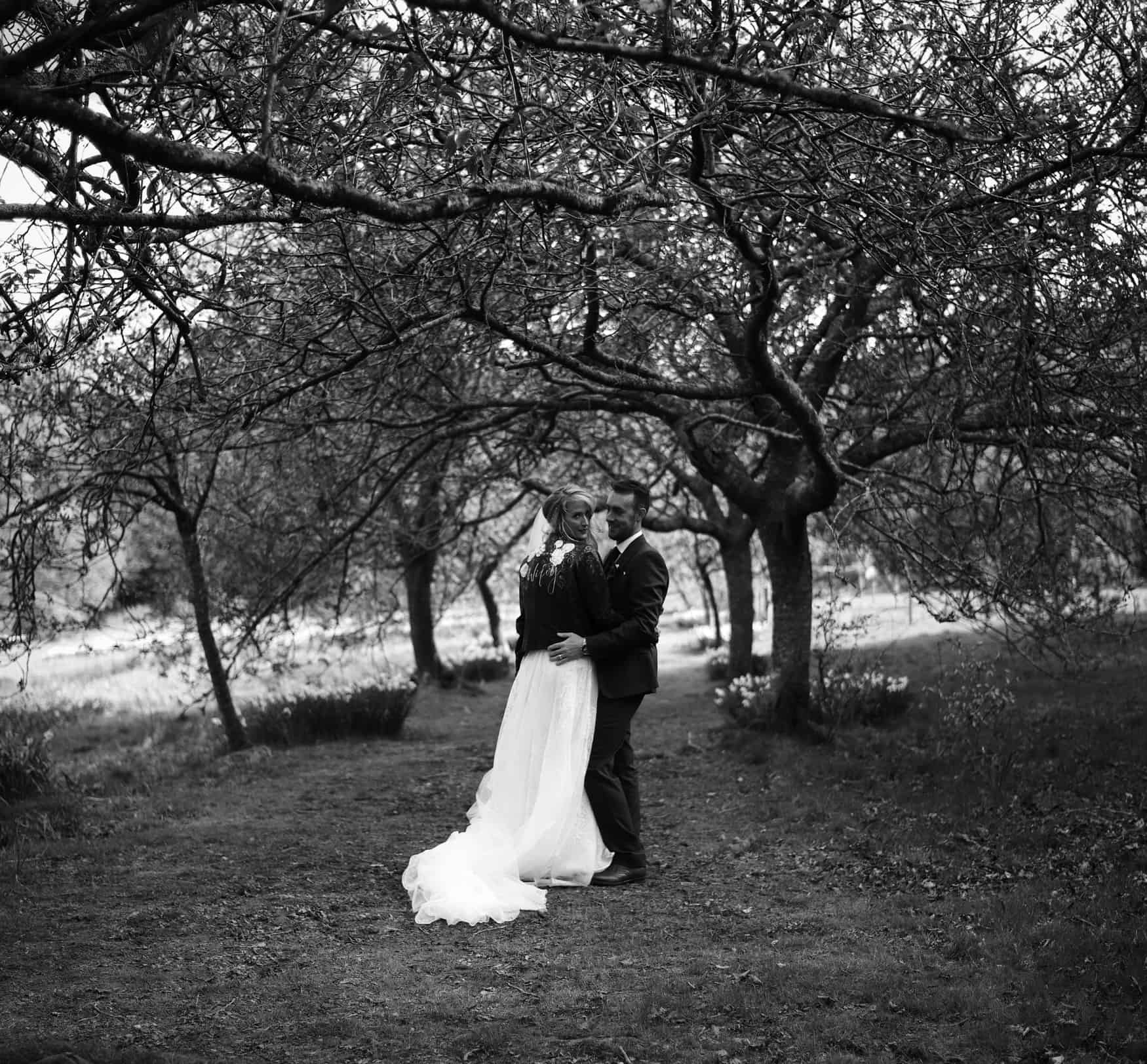 bride and groom portraits at The Lingholm Estate